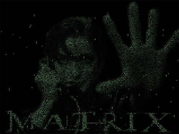 Trinitys Matrix Animated Wallpaper 100 Free Download A Photo Of